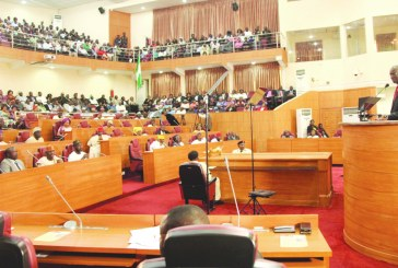 2015: Year of 'austerity budgets' for the states