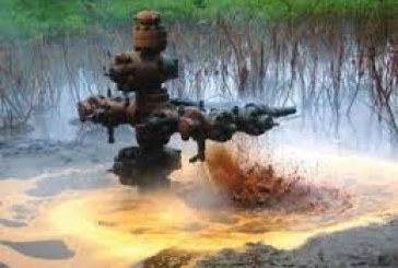 Buhari kick-starts environmental clean-up of Ogoniland