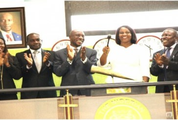 NSE index slides further by 0.6%, as Transexpr, Berger, Okomuoil add weight