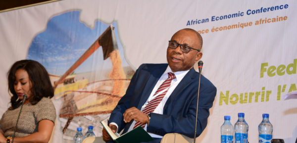 African Economic Conference: Why does Africa need an agricultural transformation?