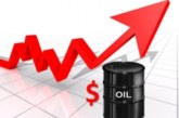 Oil rises as OPEC members implement output deal