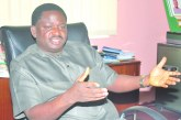 Government on the path to touching lives of Nigerians  —Femi Adesina