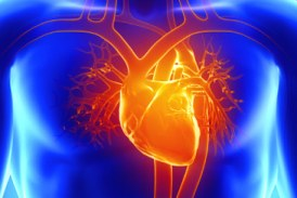 Time to create awareness on heart diseases