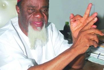 Soon, Nigeria May  Cease to Exist —Ezeife